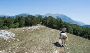 4 Mete ideali per un weekend a cavallo