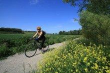 Dal Labirinto Etrusco al Sentiero della Bonifica in bici