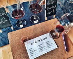 Assapora la Sicilia con una degustazione di vini ad Alcamo
