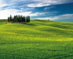 Tour di un giorno a Pienza e Montepulciano con partenza da Firenze