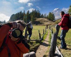 Trekking fotografico nel Parco Naturale Alta Valle Antrona