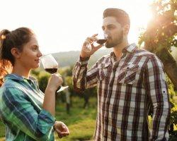 Tour del Chianti: visita delle cantine con degustazione di vini