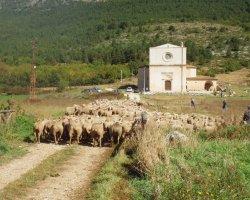Pastori per un giorno:escursione in montagna nel Gran Sasso