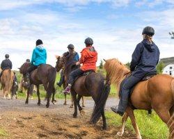 Passeggiata a cavallo nel Chianti: in sella nei paesaggi della campagna senese