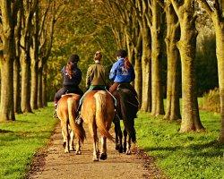 Passeggiata a cavallo nella campagna umbra con pernottamento