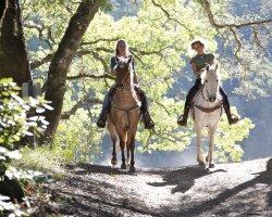 Passeggiata a Cavallo nel Chianti vicino a Siena