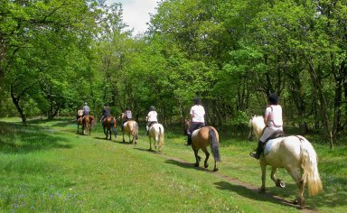 horse riding with food & wine tasting, franciscan path