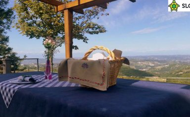 Picnic in the hills Langhe