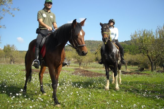Horse riding experience in the heart of Sicily