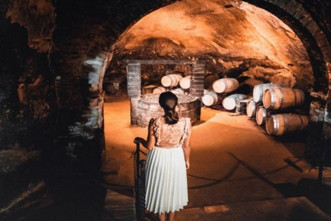 Tour of the historical cellars